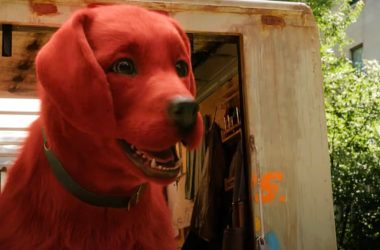 Red Cliff Dog