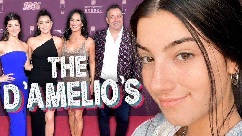 The D'Amelios Show